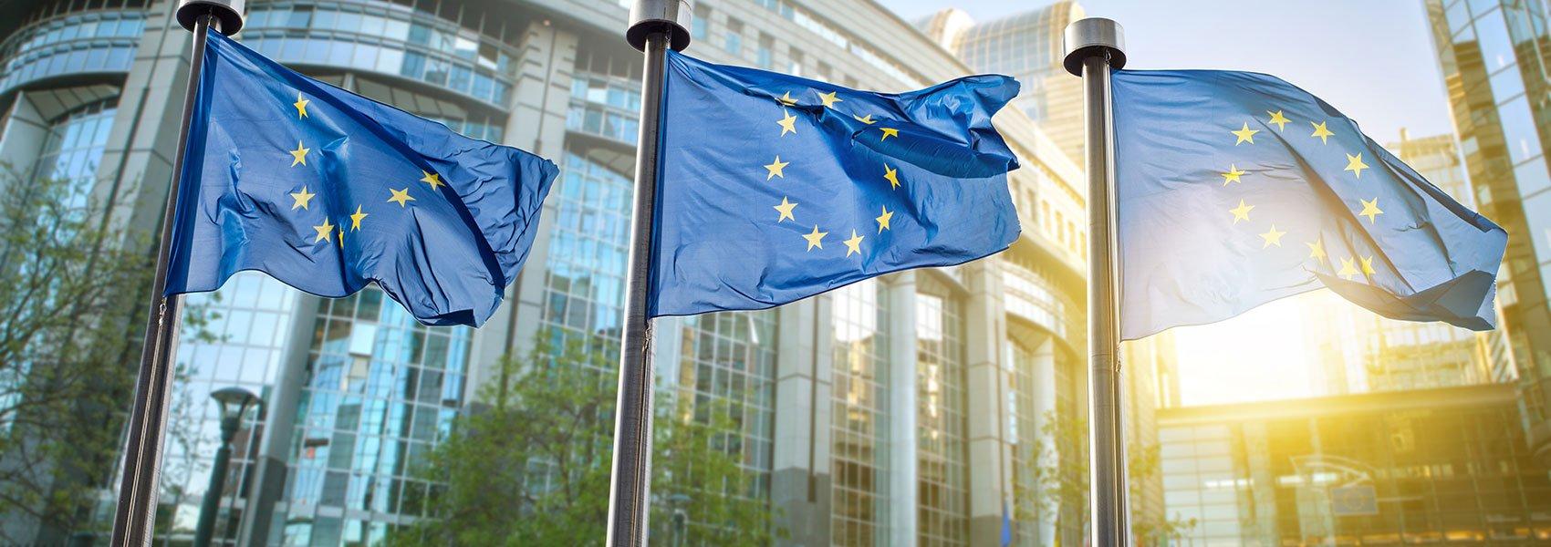 European Union Environmental Footprint